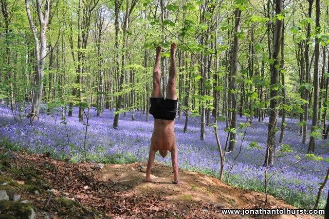 champernhayes-handstand