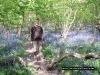 jonathan-bluebells