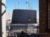 HMS Ocelot