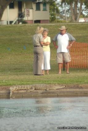 mackay-gooseponds-crocodile-04