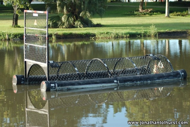 mackay-gooseponds-crocodile-09