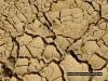 mud_dry