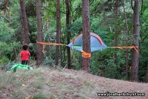 Tree Camping at Addington Hills